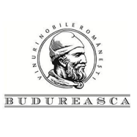 logo-budureasca200